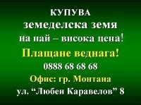 Нива, Използваема нива, Полска култура, Посевна площ,  (купува) в Враца, Борован