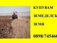 Нива, Използваема нива, Полска култура, Посевна площ,  (купува) в Силистра, Дулово