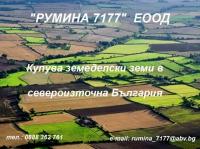 Нива, Земеделска територия,  (купува) в Силистра