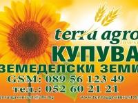Нива, Лозе, Използваема нива,  (купува) в Варна