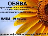 Нива,  (арендува) в Пазарджик, Пазарджик, Алеко Константиново