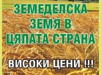 Временно неизползваема нива, Нива,  (купува) в Велико Търново, Полски Тръмбеш