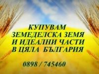 Нива, Използваема нива, Полска култура, Посевна площ,  (купува) в Велико Търново, Горна Оряховица