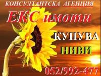 Нива, Използваема нива, Полска култура, Посевна площ,  (купува) в Разград, Разград, Разград