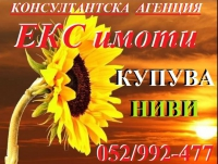 Нива, Използваема нива, Полска култура, Посевна площ,  (купува) в Бургас, Бургас, Бургас