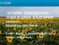Нива, Използваема нива, Полска култура, Посевна площ,  (купува) в Силистра, Алфатар