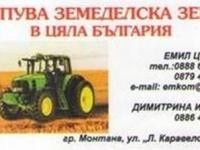 Нива, Използваема нива, Полска култура, Посевна площ,  (купува) в Видин, Бойница