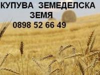 Нива,  (buy) в Добрич